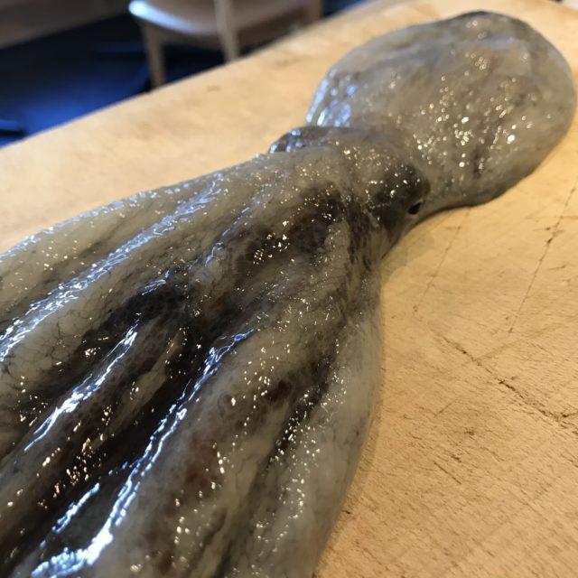 活真蛸の画像
